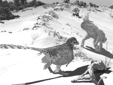 Velociraptor stalking