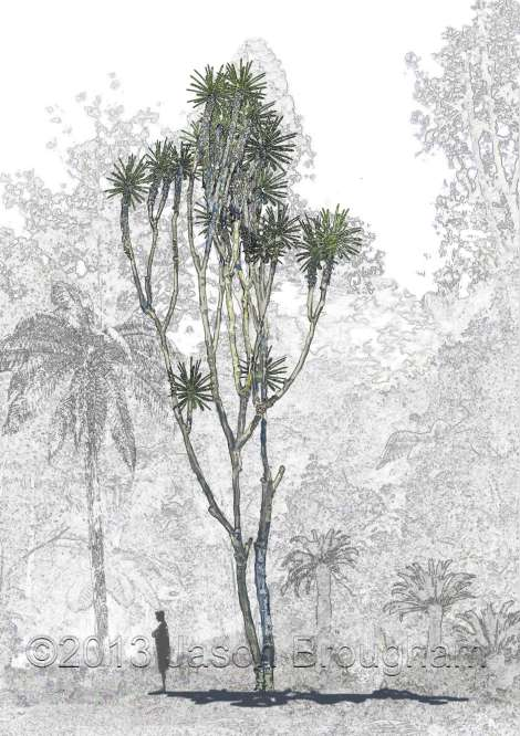 Sahnioxylon, with Ptilophyllum leaves. Here it is reconstructed with a conservative height of 15 meters.