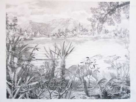Tiaojishan Formation plants, Middle Jurassic