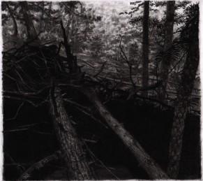 cropped-jehol-hillside-charcoal.jpg